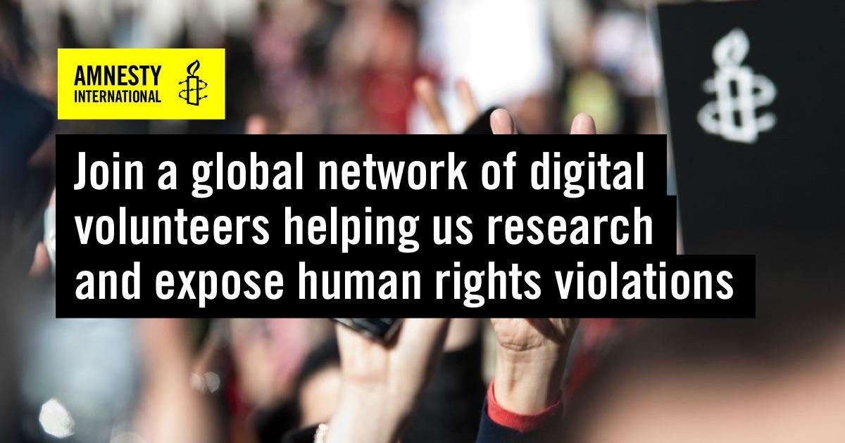 Virtual Volunteering with Amnesty International Decoders